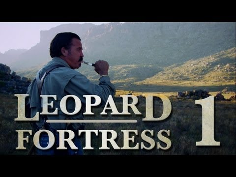 Tracking a mountain leopard: Leopard Fortress Ep 1
