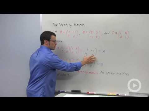 Precalculus - Graphical Interpretation of 2-by-2 Systems