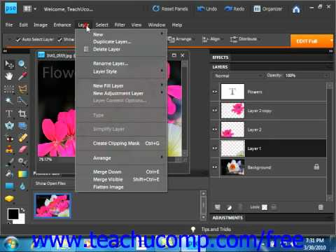 Photoshop Elements 9.0 Tutorial Stacking & Linking Layers Adobe Training Lesson 10.4