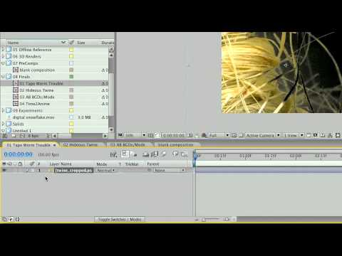 Training for Adobe After Effects CS3 - Ch2  L7 Examining the Icons & Columns in the Timeline