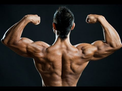 The Best Home Shoulder Exercises , Complete Workout routine