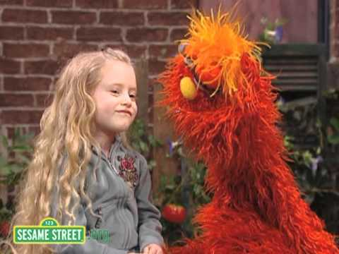 Sesame Street: Murray, Daniella, and Pets