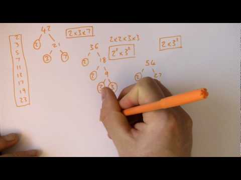 Product of prime factors, factor trees, HCF, LCM, GCF GCSE maths.MP4