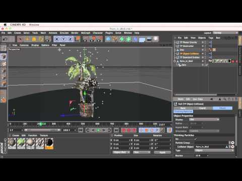 SpeedTree Animation With Rain and Thinking Particles for Cinema4D