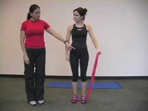 Upper Body Exercise Demonstration