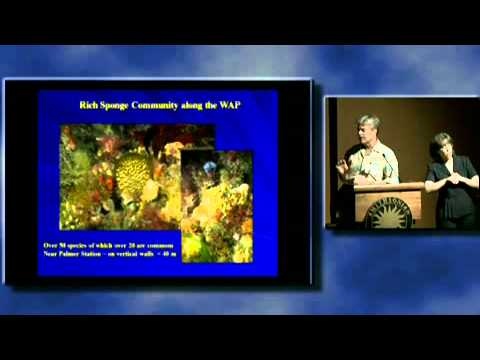 Scuba Science 10 & 11- Chemical Ecology on Coral Reefs...& Chemical Ecology of Marine Macroalgae...