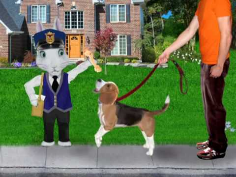 Pets Video - Hooked on Phonics Learn to Read Pre-K