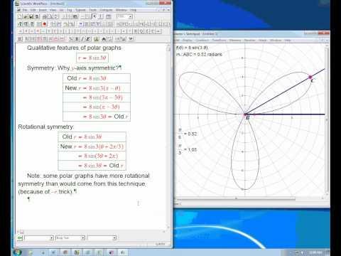 Qualitative features of polar graphs