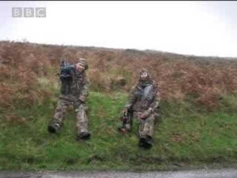 Wild deer - BBC wildlife