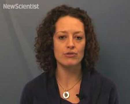 New Scientist video round-up - January 25, 2008