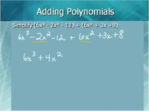 Working With Polynomials