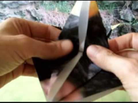 Origami Blackbird