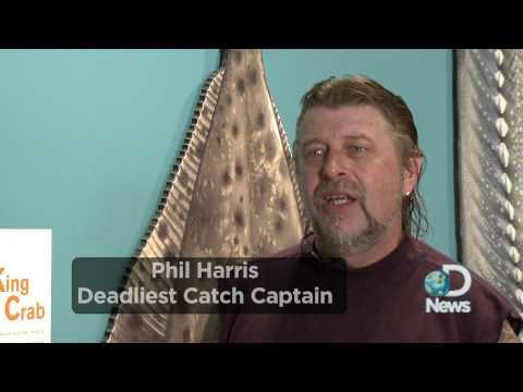 Sea Monsters Still Exist