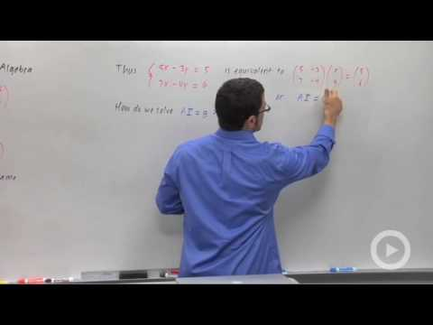 Precalculus - Applications of 2-by-2 Linear Systems