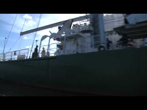 Stories from the Rainbow Warrior - Teaser