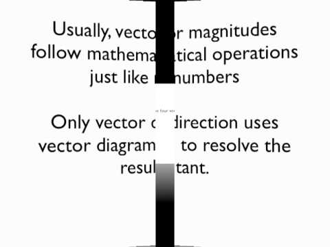 Physics Vectors