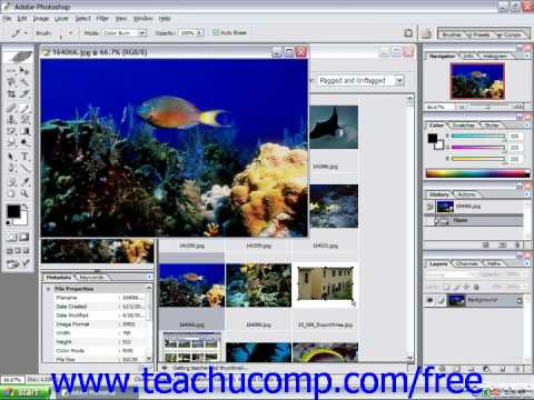 Photoshop CS5 Tutorial Using the File Brower-7 & CS Adobe Training Lesson 1.5