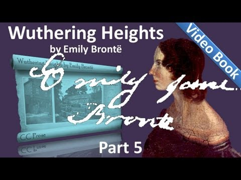 Part 5 - Wuthering Heights Audiobook by Emily Bronte (Chs 22-28)