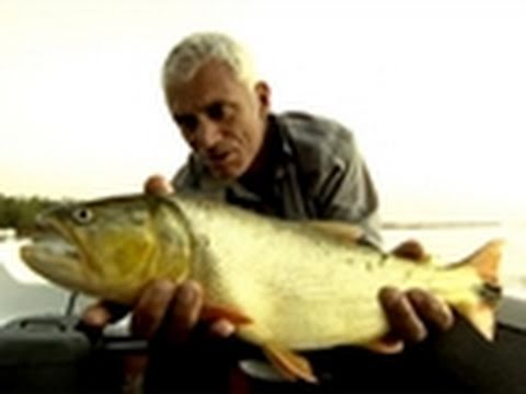 River Monsters- Catching a Dorado