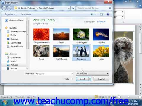 Word 2010 Tutorial Using Picture Tools-2010 Microsoft Training Lesson 12.3