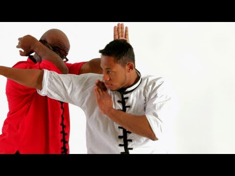 Shaolin Kung Fu: Self-Defense from Long Fist Form / Hook Palm