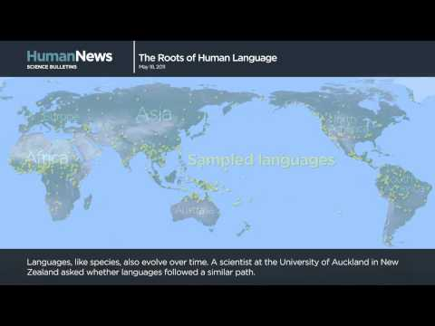 Science Bulletins: The Roots of Human Language