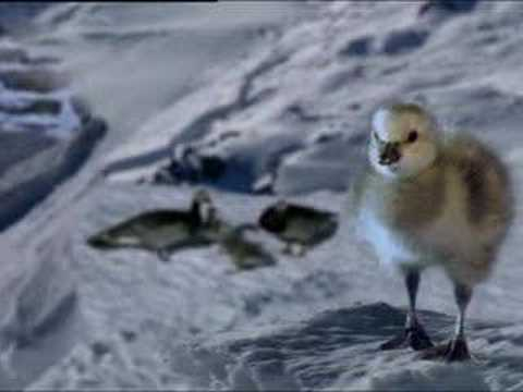 Penguin ice race - BBC animation