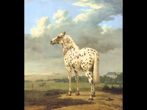 "The ""Piebald"" Horse, Paulus Potter"