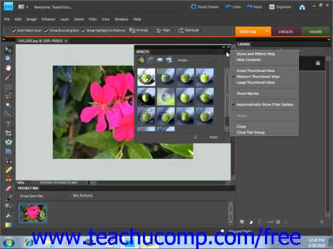 Photoshop Elements 9.0 Tutorial The Panel Bin Adobe Training Lesson 3.3