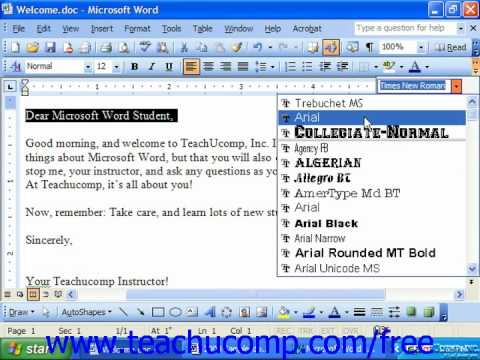 Word 2003 Tutorial Copying & Pasting Text Formatting Microsoft Training Lesson 5.5