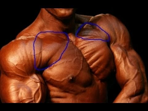 Upper Chest Workout-Workout For your upper chest