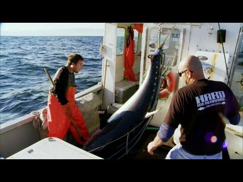Wicked Tuna - Tails Up Baby