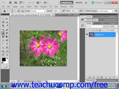 Photoshop CS5 Tutorial The Clone Stamp Tool Adobe Training Lesson 14.15