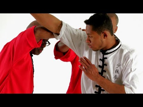 Shaolin Kung Fu: Self-Defense from Long Fist Form / Block Palm