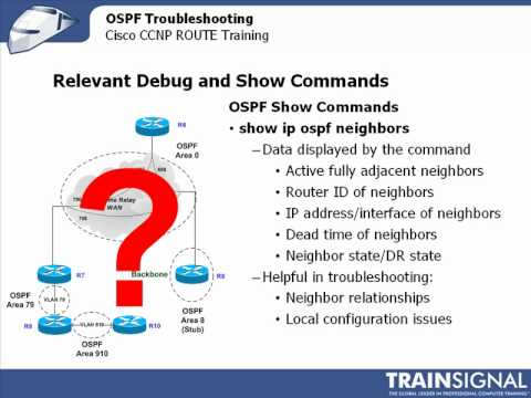 Show and Debug OSPF Commands