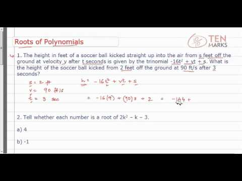 Roots of Polynomials-Application