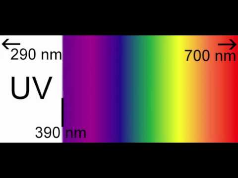 The Decolorization of Crystal Violet