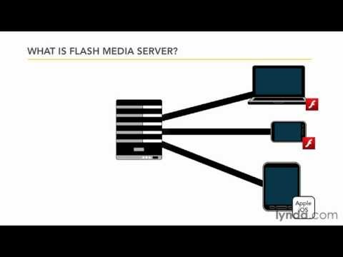 Stream video with Flash Media Server | lynda.com tutorial