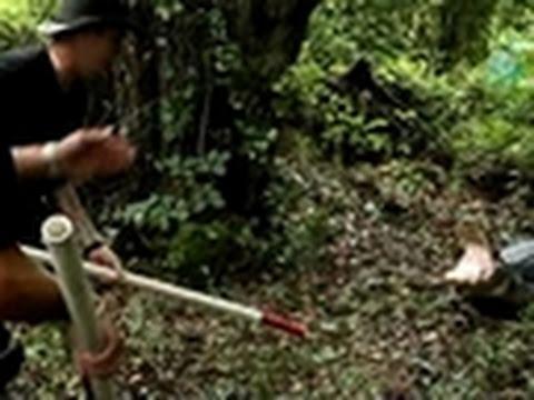 Swamp Brothers- Gator Territory