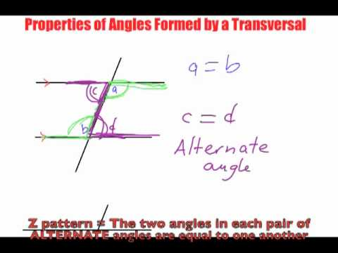 Properties of Angles formed by a Transversal