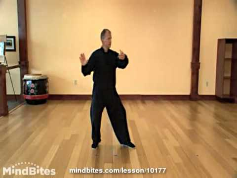 Tai Chi Made Easy - Lesson 12 - Fist Under Elbow