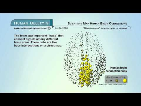 Science Bulletins: Scientists Map Human Brain Connections