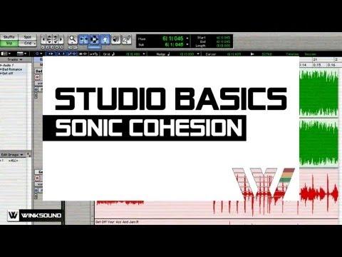 Sonic Cohesion | Studio Basics | WinkSound
