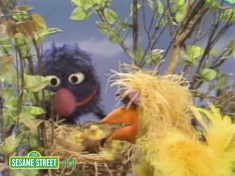 Sesame Street: Grover Finds A Bird's Nest
