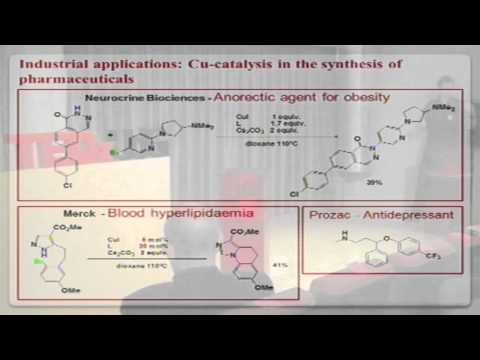 TEDxUdG - Xavi Ribas - Chasing Ideas: Sustainable Catalysis for Chemical Transformations
