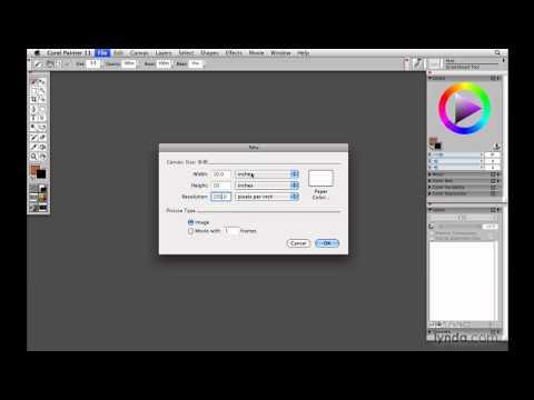 Painter, Wacom: Sizing image resolution for output | lynda.com