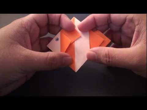 Origami Daily - 135: Clown Fish - TCGames [HD]