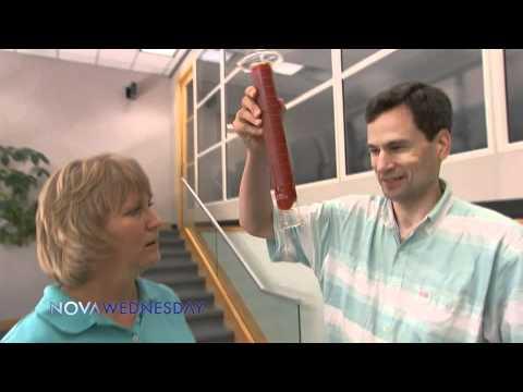 NOVA   The Smartest Night on Television -- Wed. Feb. 9   PBS