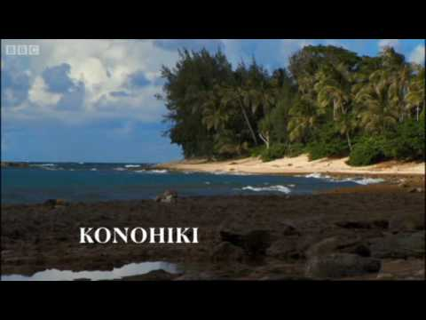The Hawaiian Konohiki - Hawaii - Message in the Waves - BBC