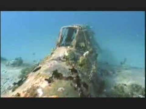 NATURE |  War Wrecks of the Coral Seas | Preview | PBS